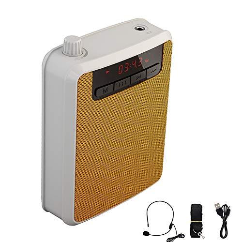 WFLJ Handige en multifunctionele PA Speaker Sound System met Headset Microphone, Oplaadbare 10W Draadloze luidspreker & Voice Amplifier Ondersteuning Opname/TF Kaart/MP3 Formaat Audio/U Schijf
