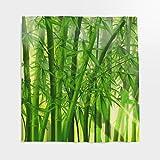 Grüne Bamboo Wald Duschvorhang Bambusmotiv Bambus mit Anti-Schimmel-Effekt, Anti-schimmel Waschbar Wasserdicht Stoff Duschvorhang Shower Curtain für Badezimmer Grün 120x180cm