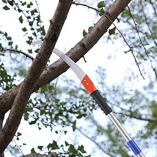 INFLATION Extendable Manual Pole Saw For Tree Trimming - Tree Pruner With 10FT Extension Stainless Steel Pole, 3-Sided Cutter Blade Tree Saw Cutter