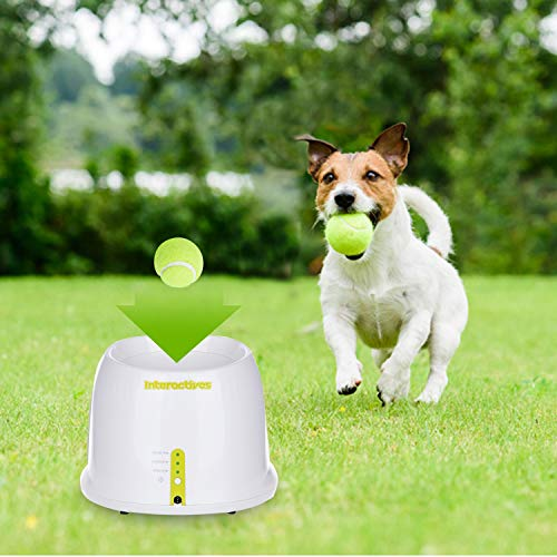 All for Paws Interactive Automatic Ball Launcher Dog Toy