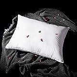 L LOVSOUL Hungarian Goose Down Pillow,White Down Pillow Queen Size Pillow...