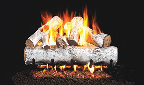 Great Deal! Real Fyre 24-inch White Birch Vented Gas Logs Bundled with G45 Burner Kit (Natural Gas)