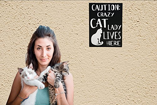 JennyGems Cat Sign - Caution Crazy Cat Lady Lives Here - Wood Sign - Cat Owners - Cat Stuff for Cat Lovers - Cat Moms - Funny Cat Signs - Presents for Cat Owners, Cat Lady - Cat Decor