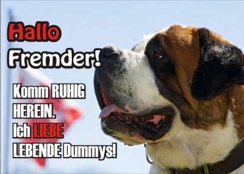INDIGOS UG - Türschild FunSchild - SE312 DIN A5 ACHTUNG Hund BERNHARDIN?ER - für Käfig, Zwinger, Haustier, Tür, Tier, Aquarium - aus hochwertigem Alu-Dibond beschriftet sehr stabil