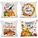 4-Pack Hexagram Fall Pumpkin Pillow Covers