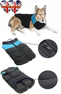 Veste pour chien Tailles de S à 7 XL Couleur : bleu/vert