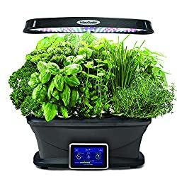 Flowers Hoctor Indoor Herb Garden w//LED Grow Light Succulents Hydroponics Growing System for Plants Fruits Hands-Free Home Kitchen Gardening Vegetables