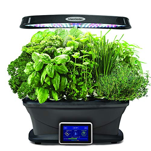 AeroGarden, Black Bounty, garden