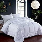 Bedding Queen Comforter Hotel Reversible Duvet Insert - Quilted Comforter with Corner Tabs - Box Stitched Down Alternative Comforter (White, Queen)