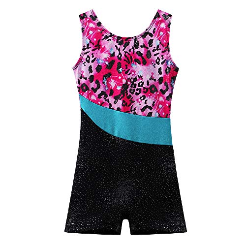 BAOHULU Toddlers Girls Gymnastics Dance Leotards-One-piece Sparkle Stripes & Stiching Athletic Clothes Leopard 140(8-9Y)