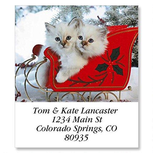 Love Those Cats Self-Adhesive, Flat-Sheet Select Address Labels (12 Designs)