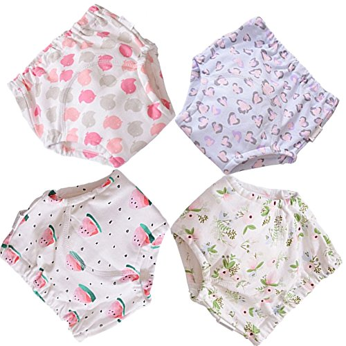 BBPIG Potty Training Pants for Baby and Toddler Girls,Baby Underwear 4 Pack (90(2T), G4