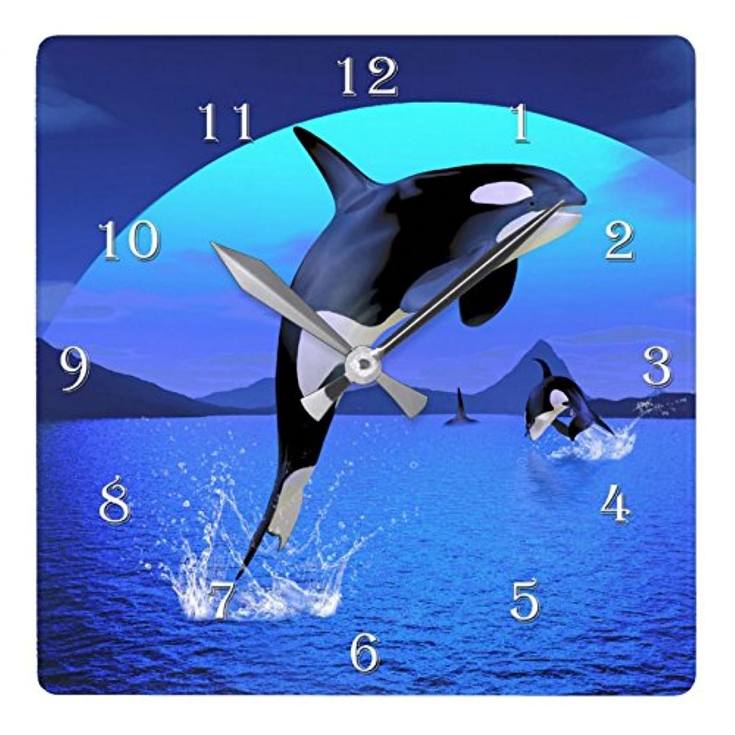 征服者形成カルシウムシャチのイラストの壁掛け時計:ピクチャークロック(世界の野生動物シリーズ) (A) [並行輸入品]
