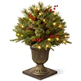 National Tree 26 Inch 'Feel Real' Colonial Porch Bush with Cones, Red Berries...