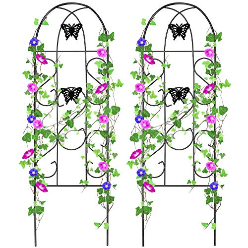 Amagabeli 2 Pack Garden Trellis 60 x 18 Rustproof Black Iron Butterfly Potted Vegetables Flowers Patio Metal Lattices Grid Panels for Ivy Roses Cucumbers Clematis Supports