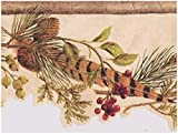 Pine Cones Feather Gooseberry Red Currant on Vine Coconut White Wallpaper Border Retro Design, Roll 15' x 6.25''