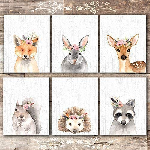Animal Wall Decor Amazon Com