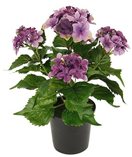 Flair Flower Hortensie Im Topf, Polyester, Kunststoff, Violett, 22 x 22 x 30 cm