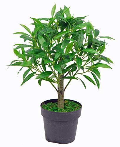Yanka-style - Albero di oliva artificiale con vaso, altezza ca. 65 cm, pianta artificiale, albero artificiale, decorazione regalo (JWS2041)
