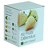 Plant Theatre - Kit Fruits Défendus - 5 fruits délicieux à faire pousser