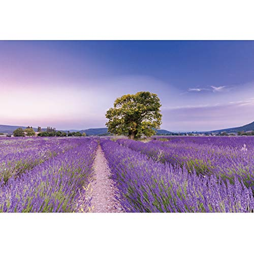 OERJU 5x3ft Nature Scenery Backdrop Lavender Field Blue Skies White Clouds Trees Photography Background Personal Online Show Decoration Girls Birthday Party Wallpaper Wedding Photo Studio Props