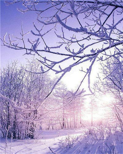 DIY pintura al óleo sin marco por números paisaje de invierno decoración del hogar pintura acrílica para colorear por números árbol regalo único A11 40x50cm