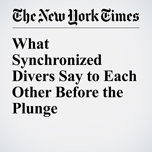 What Synchronized Divers Say to Each Other Before the Plunge audiobook cover art