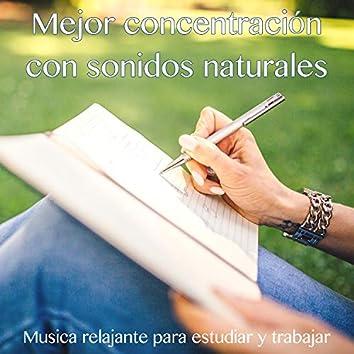 Mejor concentracion con sonidos naturales – Musica relajante para estudiar y trabajar
