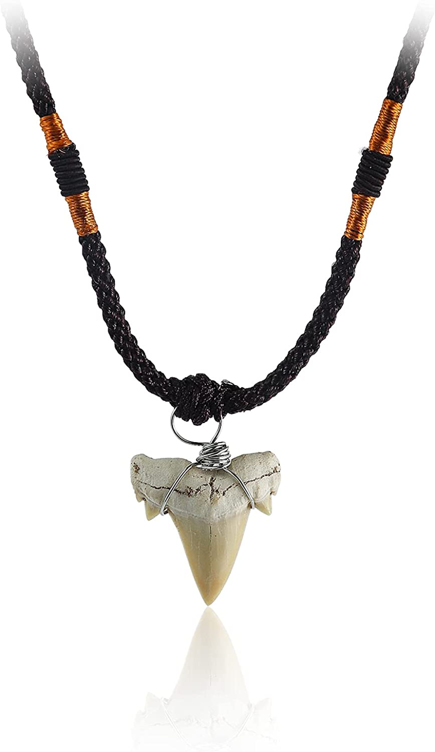 Authentic Shark Tooth Pendant Fossilized Prehistoric Necklace Sh Max Today's only 48% OFF