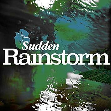 Sudden Rainstorm
