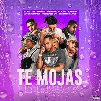 Te Mojas