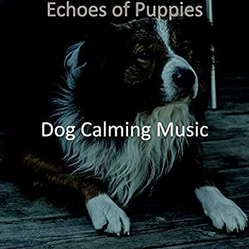 Echoes of Puppies