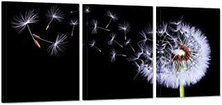 iHAPPYWALL 3 Pieces Canvas Wall Art Black and White Fluttering Dandelion Nature Flower Picture Print On Canvas Modern Home Decor Stretched and Framed Ready to Hang