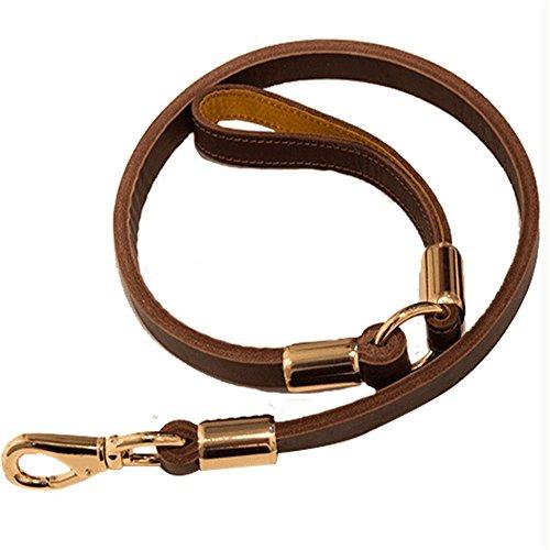 XYL huisdier benodigdheden Hond touw, huisdier drag touw, huisdier drag touw verdikking en verbreding, hond ketting grote hond wandelen hond, huisdier leer, echt lederen riem, dogskin touw.