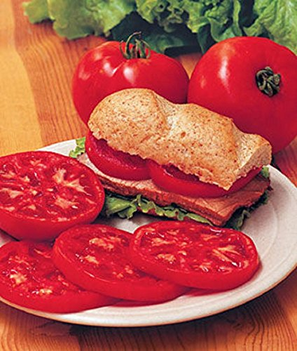 PLAT FIRM GRAINES DE GERMINATION: 50 - Samen: Steak Sandwich hybride F1 Tomatensamen - Perfekt für Sandwiches, Burger !!!!!