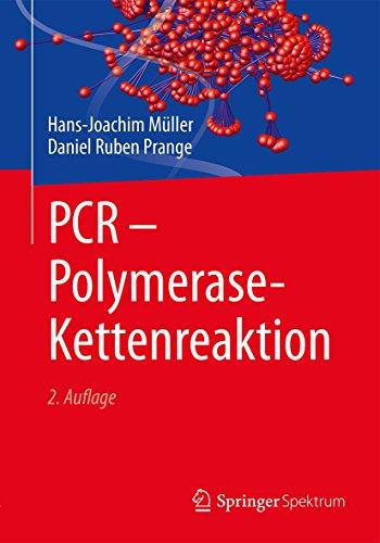 PCR - Polymerase-Kettenreaktion