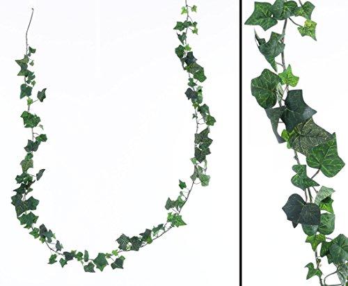 Günstige Efeu Grilande Hedera helix mit grünen textilen Blättern in unterschiedlichen Größen und einer Gesamtlänge von ca. 180cm - Kunstblume Rankpflanze Efeu Girlande Dekoration Kunstpflanze Restaurant Dekoration