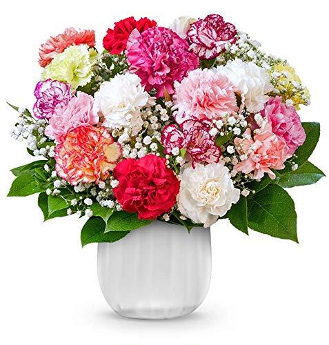Blumenstrauß Rainbow, Bunter Nelkenstrauß, 7-Tage-Frischegarantie, Qualität vom Floristen, bunte Nelken, Schleierkraut, GRATIS-Vase, perfekte Geschenkidee, versandkostenfrei bestellen