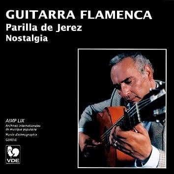 Guitarra Flamenca (Guitar Flamenco): Nostalgia