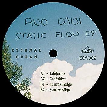Static Flow