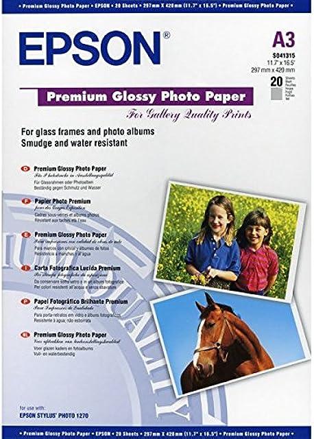 Epson Premium Glossy Photo Paper - Papel fotográfico