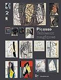 Picasso - Tableaux magiques