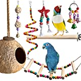 Parakeet Toys,Bird Toys for Parakeet,6Pack Bird Swing Toys for Cage Cockatiel Accessories Conures Budgies Afrian Grey Lovebirds Medium Small Set Natural Chewing Swing Perches Coconut Hut