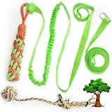 Galiyen Interactive Outdoor Dog Bungee Rope Toys for Small Medium Large Dogs Puppy Pitbull 2 Chew Toys Durable Outside Tether Tug of War Play Yard Toy