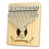 LITONGFU Piano de Dedo Alimba Acrílico 17 Teclas Transparente Piano de Pulgar Mbira con Martillo sintonizador