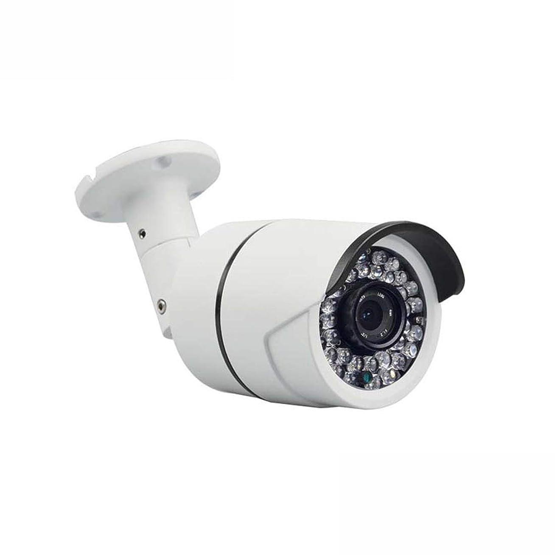 教授偽善敬意を表してJPAKIOS 200万ネットワーク監視カメラ低照度1080P自動ホワイトバランス低コードストリーム高コストパフォーマンス