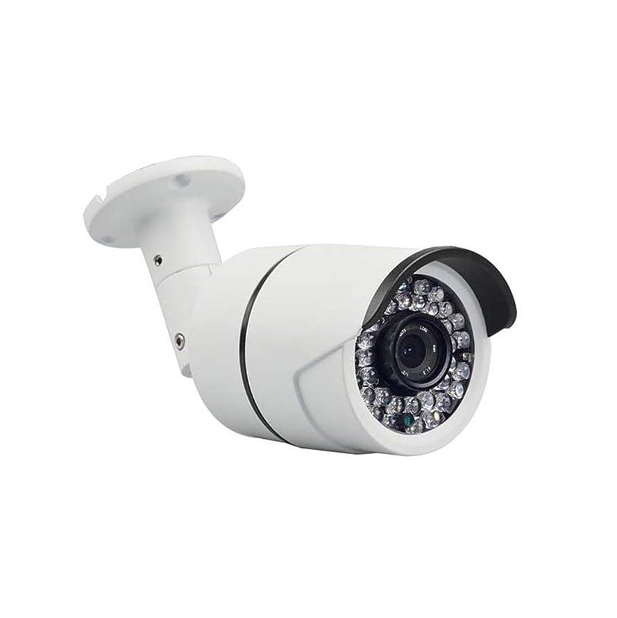 エスニック包帯無効影寳服装店 200万ネットワーク監視カメラ低照度1080P自動ホワイトバランス低コードストリーム高コストパフォーマンス