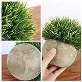 Zoom IMG-2 gomaihe 3 pezzi piante artificiali