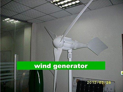 Gowe klein 1KW Wind Generator 48V/24V groß Ausgang geeignet Verwendung auf Boot/sailling/Home