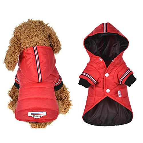 Judy Hafgey Ropa para Perros, Chaqueta clida de Invierno para Perros, Abrigo para Cachorros, Ropa para Chihuahua, Sudaderas con Capucha para Perros pequeos y medianos, Atuendo para Cachorros XS XL